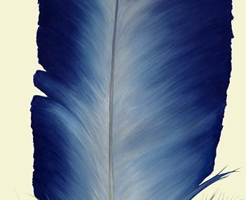 Steller Blue Feather