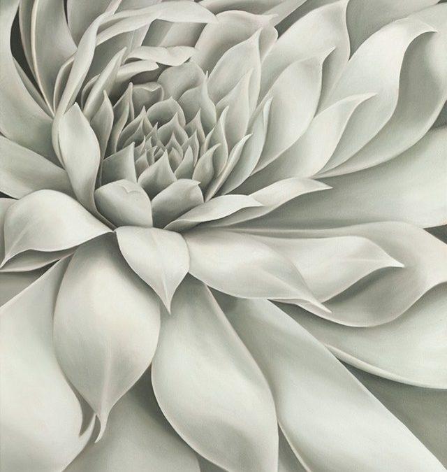 Seven Shades of Gray